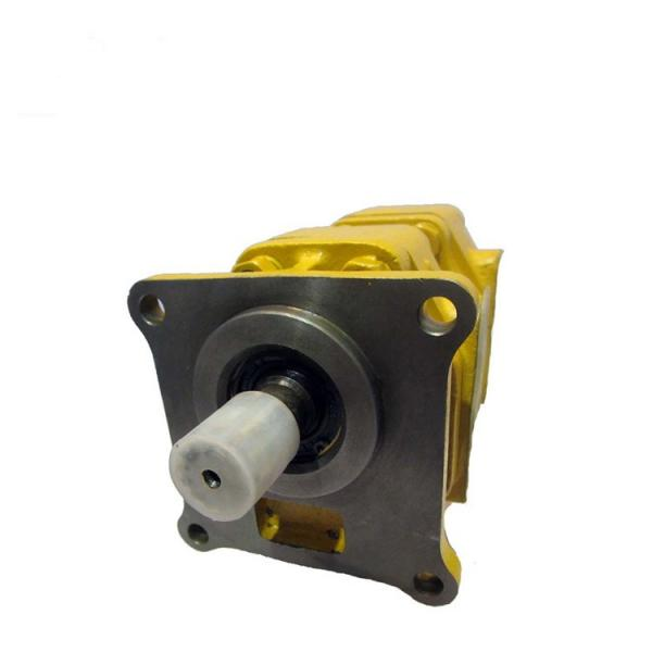 SUMITOMO CQTM42-25F-3,7-1-T-380-S1173YD Double Gear Pump #3 image