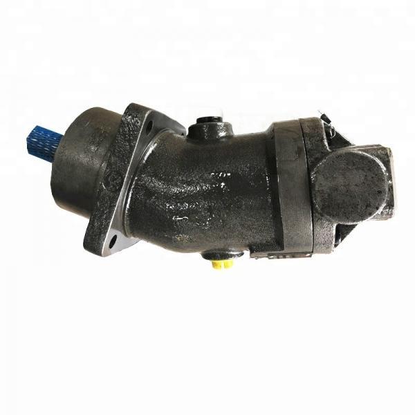SUMITOMO CQTM42-25F-3,7-1-T-380-S1173YD Double Gear Pump #2 image