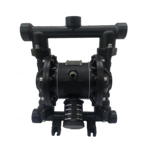 SUMITOMO QT61-160-A Low Pressure Gear Pump #2 image
